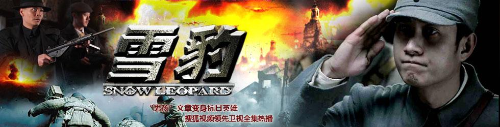 电视剧雪豹剧情_雪豹全集(1-40) - 电视剧 - 高清正版在线观看 - 搜狐视频